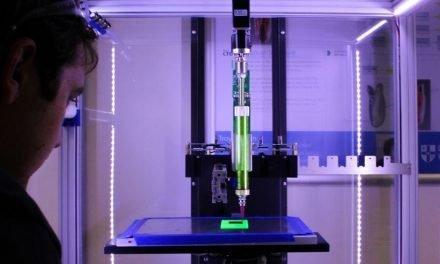 Israeli Scientists Print First 3D Heart Using Human Tissue