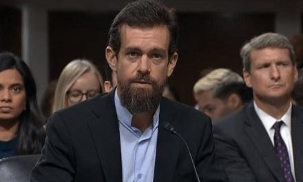 Heads of Twitter and Yelp Join 180 CEOs Signing Letter Supporting Abortion