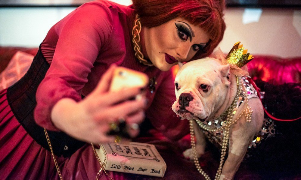 """LGBTQ Folks Are Now Doing """"Doggie Drag Shows"""""""