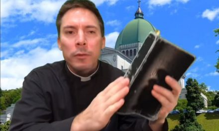 Catholic priest speaks out against 'pagan rituals' at Vatican: We must 'preach Jesus'