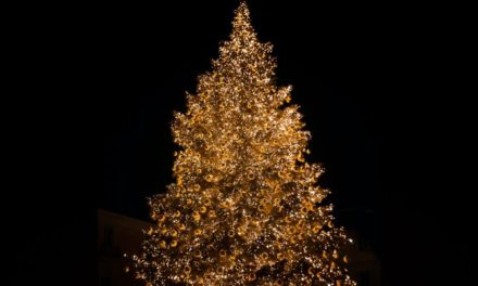 Wisconsin Governor Changes 'Christmas Tree' to 'Holiday Tree,' Legislature Pushes Back