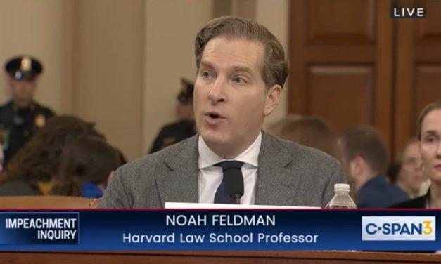 Dem Witness Noah Feldman Penned Fawning Defense of Islamic Shariah Law